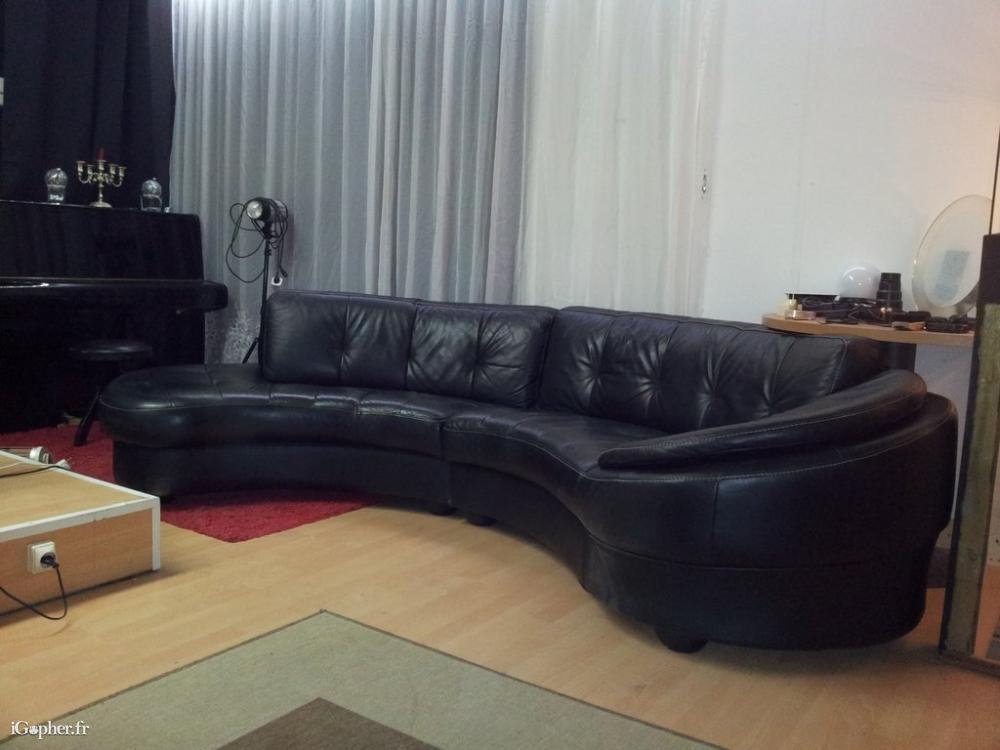 Canapé en cuir noir demi rond iGopher