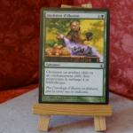 Carte Magic the Gathering : Abolition d'illusion