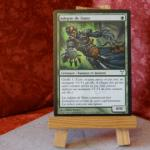 Carte Magic the Gathering : Adepte de Simic