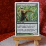 Carte Magic the Gathering : Canaliseur de Brinbois