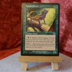 Carte Magic the Gathering : Agame pèlerin