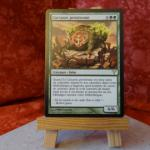 Carte Magic the Gathering : Carcasse protéenne