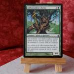 Carte Magic the Gathering : Ambassadeur Chêne
