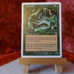 Carte Magic the Gathering : Anaconda