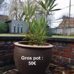 Gros pot en grey