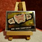 Carte de catch WWE Divas Championship (brillante)