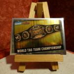 Carte de catch World Tag Team Championship (brillante)